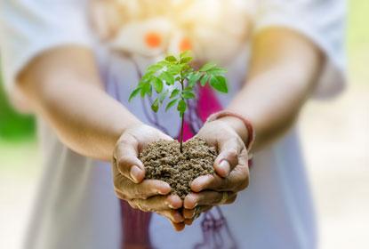 umweltfreundlicher Bodenbelag (Sujetbild)
